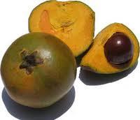 Fruta Chilena
