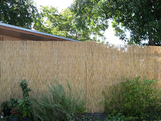 Delicieux L Backyard X Scapes Reed Fence
