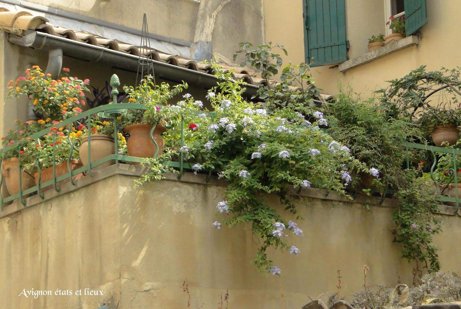 Impressions d'Avignon: Balcon fleuri