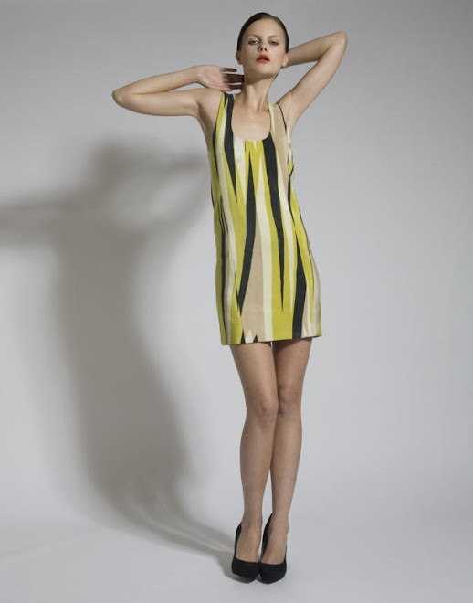 Silk Screen Lime Stripe Dress