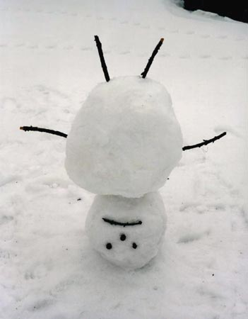 [snowman_upside_down.jpg]