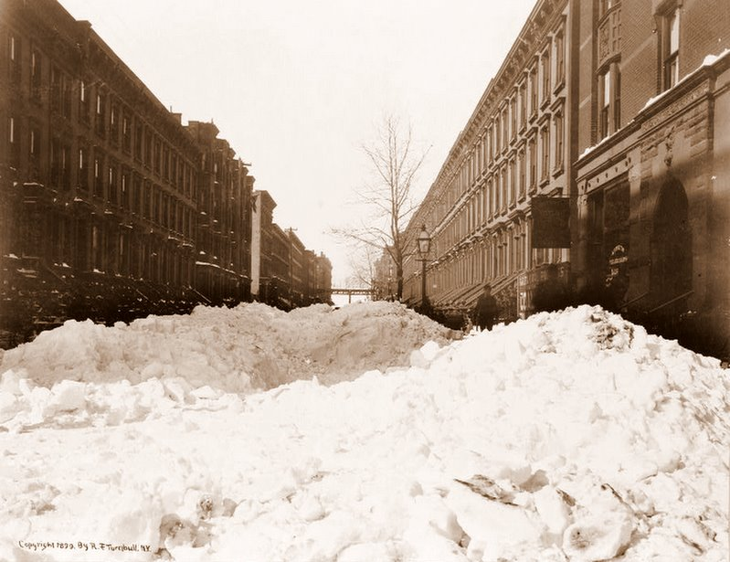 divinipotent daily bleeping blizzards
