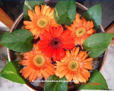 மனதை கொள்ளை கொள்ளும் பூக்களின் அலங்காரங்கள்  Flower+6