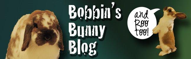 Bobbin's Bunny Blog