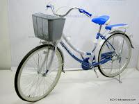 1 City Bike JIEYANG