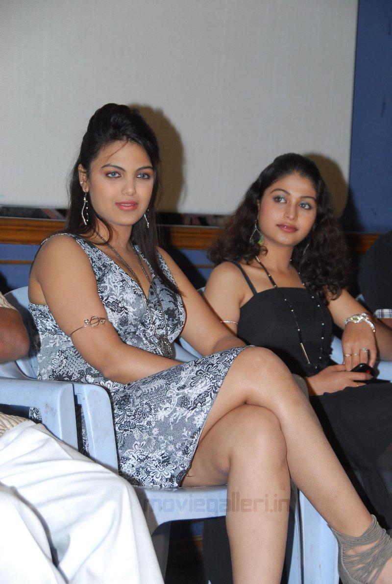 , Priyanka Tiwari Hot Stills at Before Marriage Audio Launch