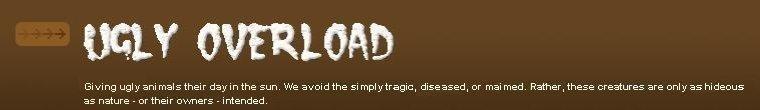 Ugly Overload