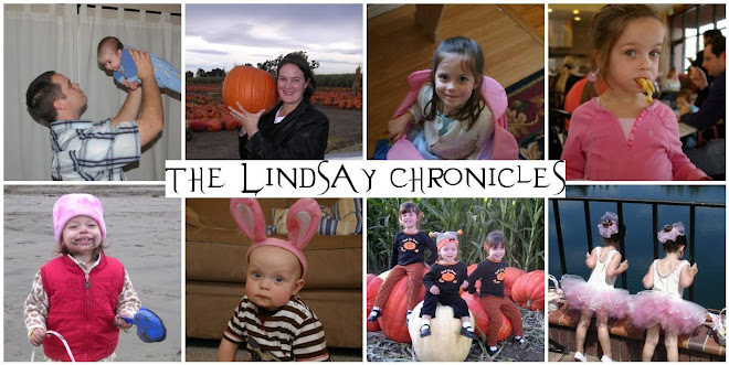 The Lindsay Chronicles