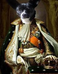 BooBoo Bonaparte
