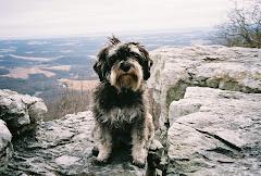 Granddog, Lola