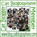 Cat Blogosphere Member