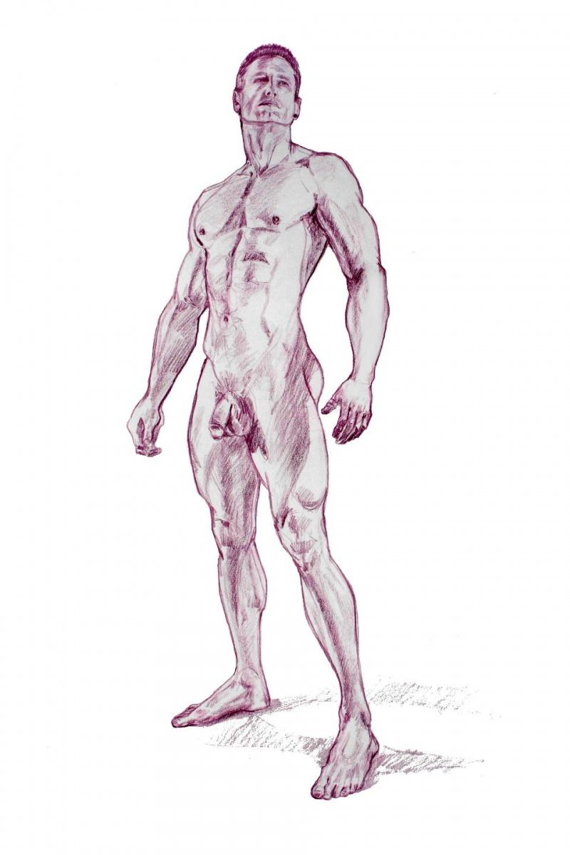 nude male love drawings