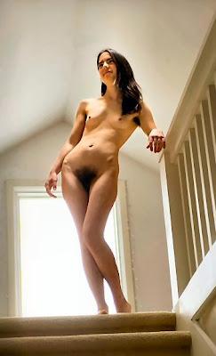 http://4.bp.blogspot.com/_LfvFpAxFqs0/SiwBwbGQECI/AAAAAAAAB4k/t3qnCvh2qsQ/s400/danishlanding.jpg