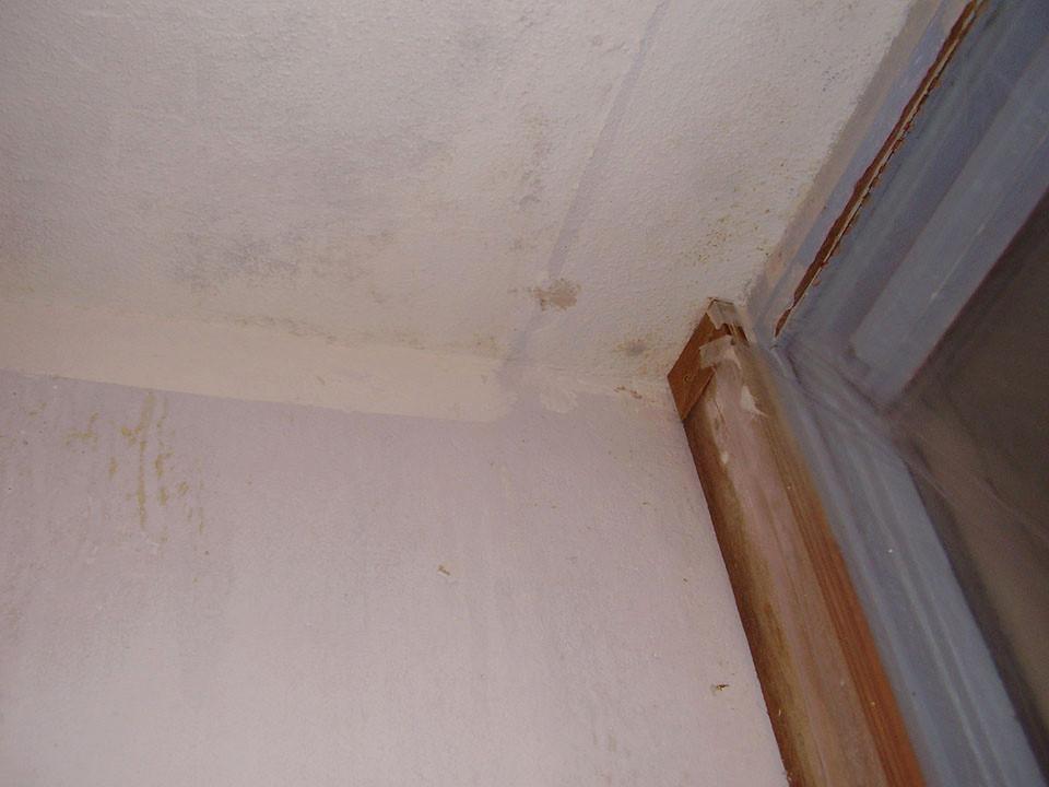 Verbouwing Venuslaan: Laatste schimmel slaapkamer verwijderd