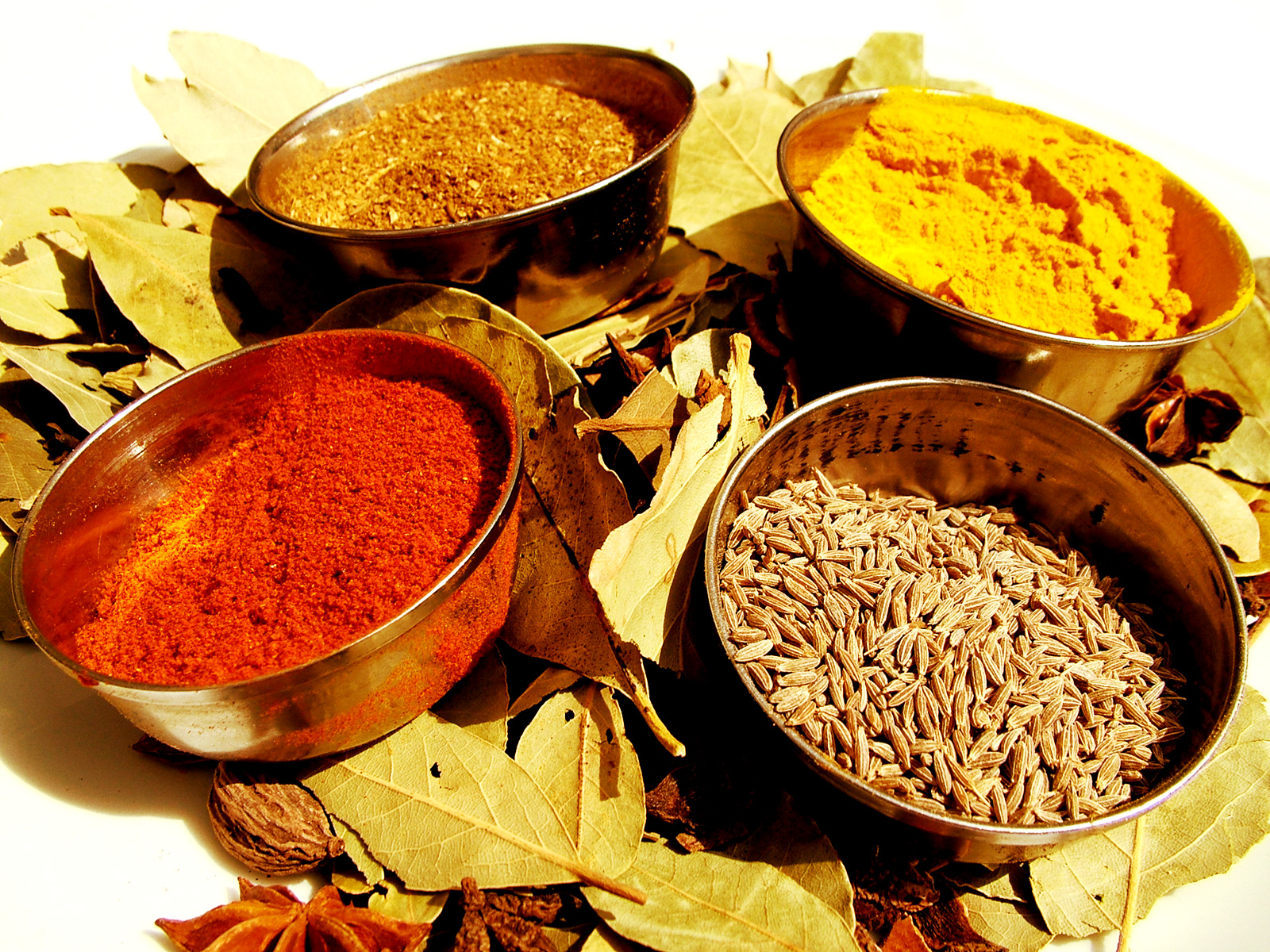 Foods of india for 7 spice indian cuisine