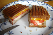 Tuna Panini Melt