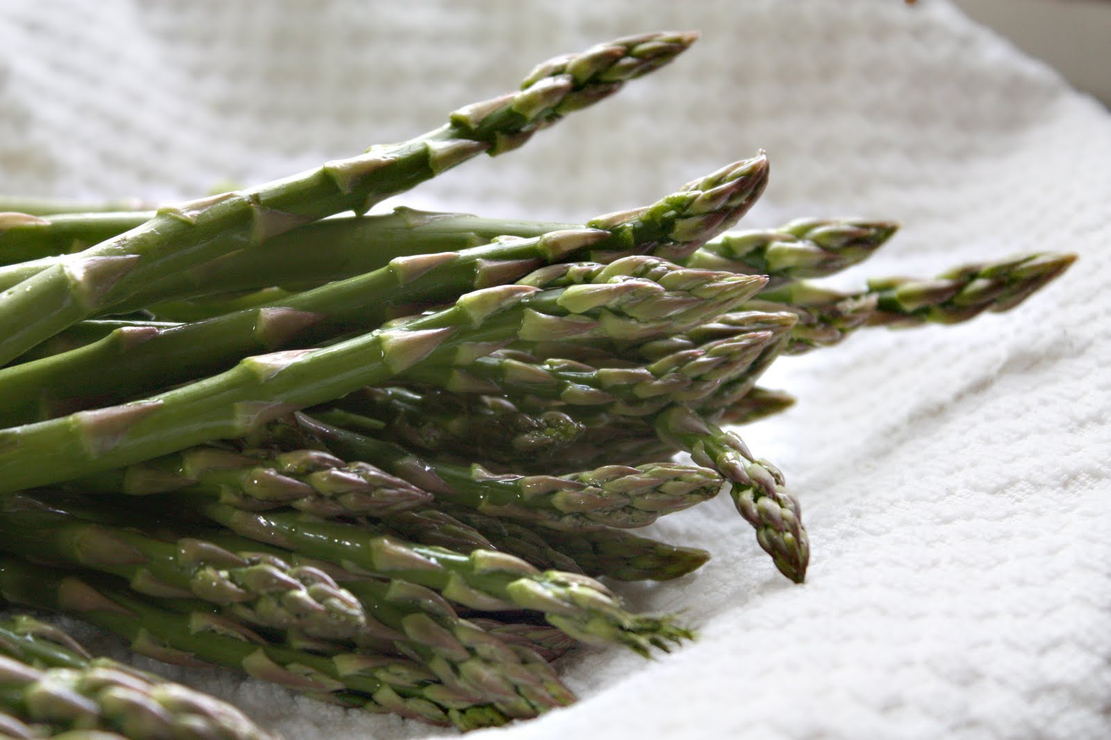Quick and Easy Refrigerator Pickled Asparagus - SheSimmers