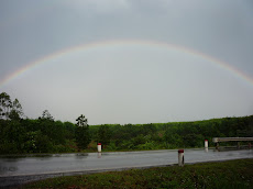Rainbow Over DMZ