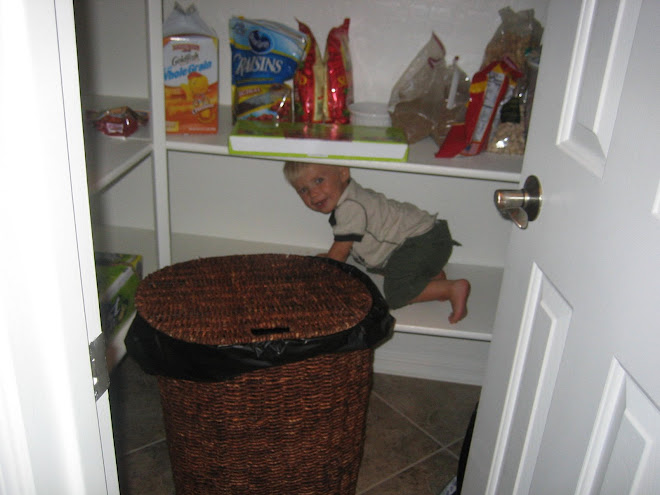 Climbing the Pantry