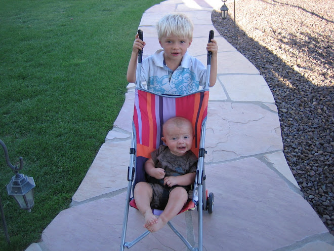 Kolton loved pushing Krew around in the stroller and so did Krew, mom was a little worried!
