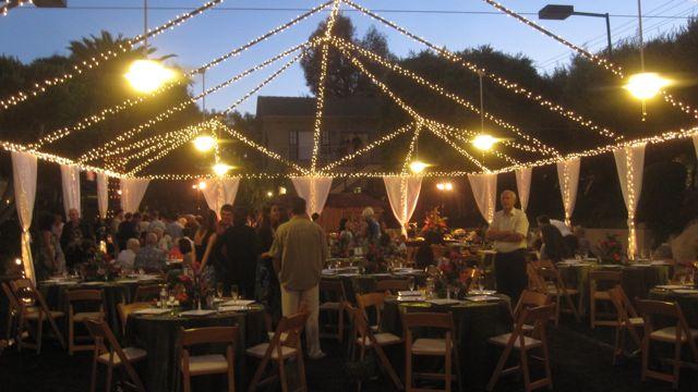 Fresh Ideas Under A Canopy Of Lights A Mid Summer Reception