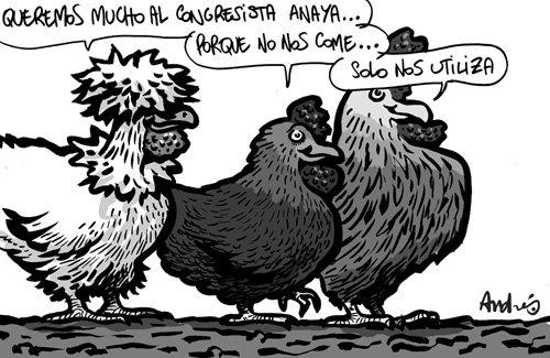 [pollos]
