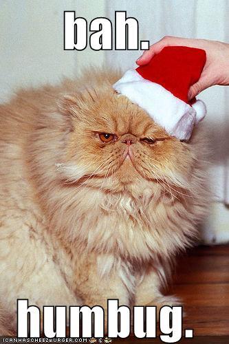funny merry christmas