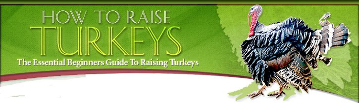 Raising Turkeys and Chickens the easy way