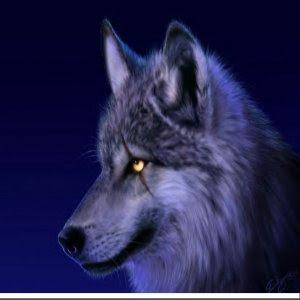 minha zampakutou Lobo