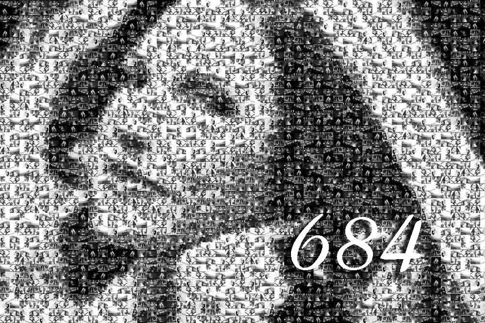[684.jpg]