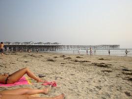 Beach and legs