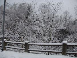 Neve :)