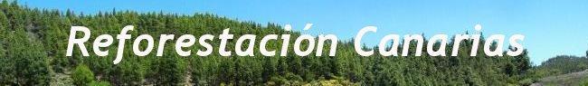 Reforestación Canarias