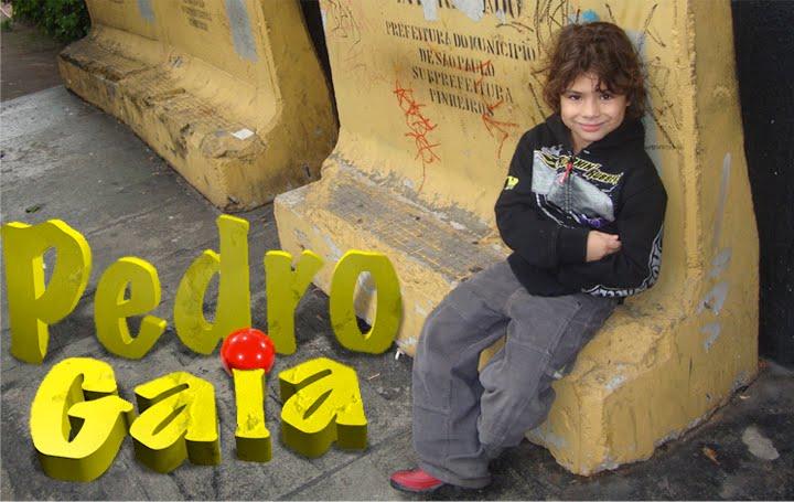 Pedro Gaia
