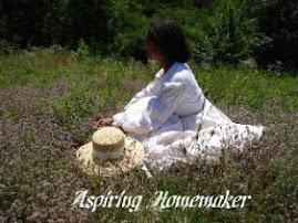 Aspiring Homemaker Blog