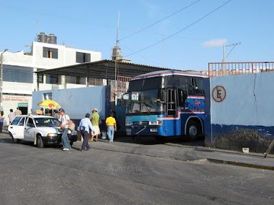 Terminal de Flores Hnos en Tacna