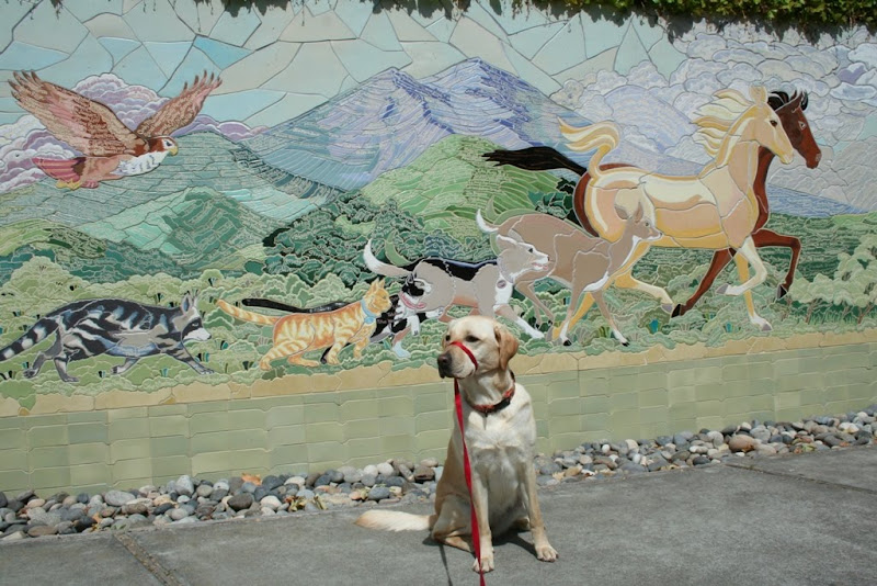 cabana sitting on pavement in front of a mosaic mural of an eagle, raccoon, cat, dog, deer, and horse, animals in a line going from smallest to largest