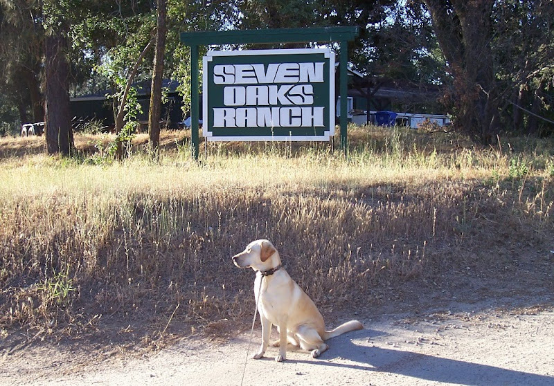 cabana sitting on a driveway in front of a green and white sign that says Seven Oaks Ranch
