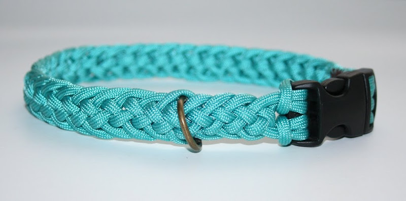 paracord dog collar in teal
