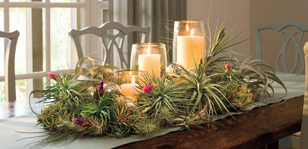 Country Christmas Table Decorations Images amp Pictures Becuo