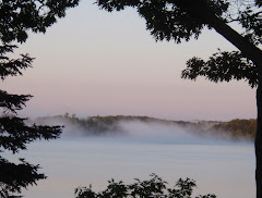 Fog on Fife Lake