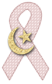 Shariah Awareness Ribbon