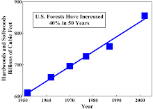 U.S. Forests Have Increased 40% in 50 Years