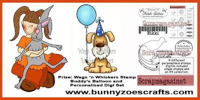 Bunny zoes crafts
