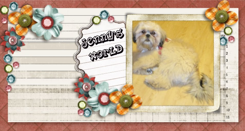 Jenny's World