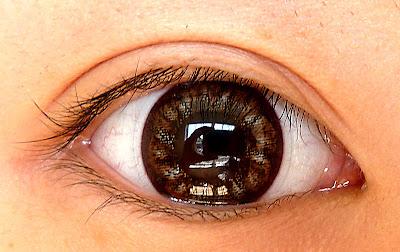 the makeup piggy : circle lens review eos flower brown