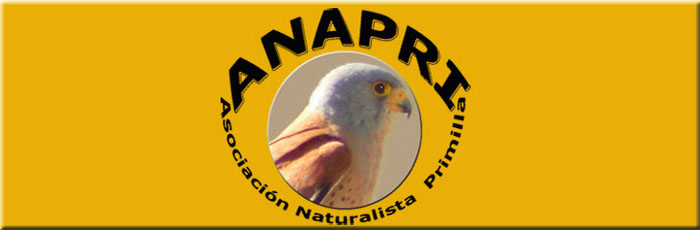 ANAPRI