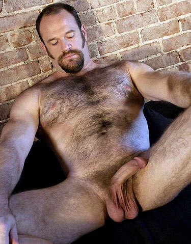 gay bear pic