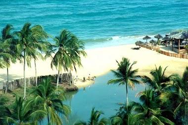 Porto Saúde 2010