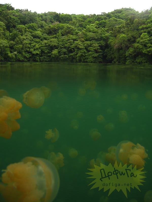 Danau Terindah di dunia